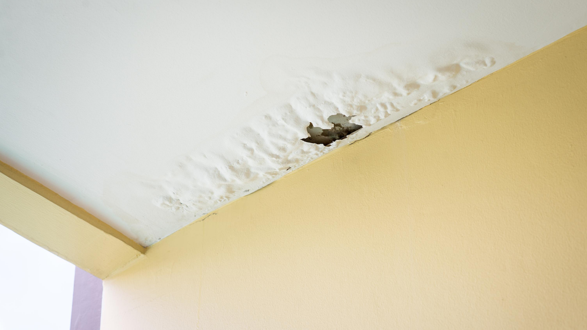 Water Leak Detection in Multifamily Properties: Protecting Your Investment